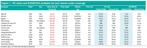 Tech Sector June 2020 Figure 1 PE ratios and EV/EBITDA multiples for tech stocks under coverage