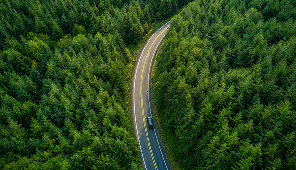 Outlook of car driving through a forest road