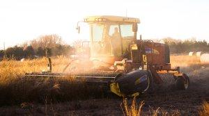 Tractor at Grain Farm